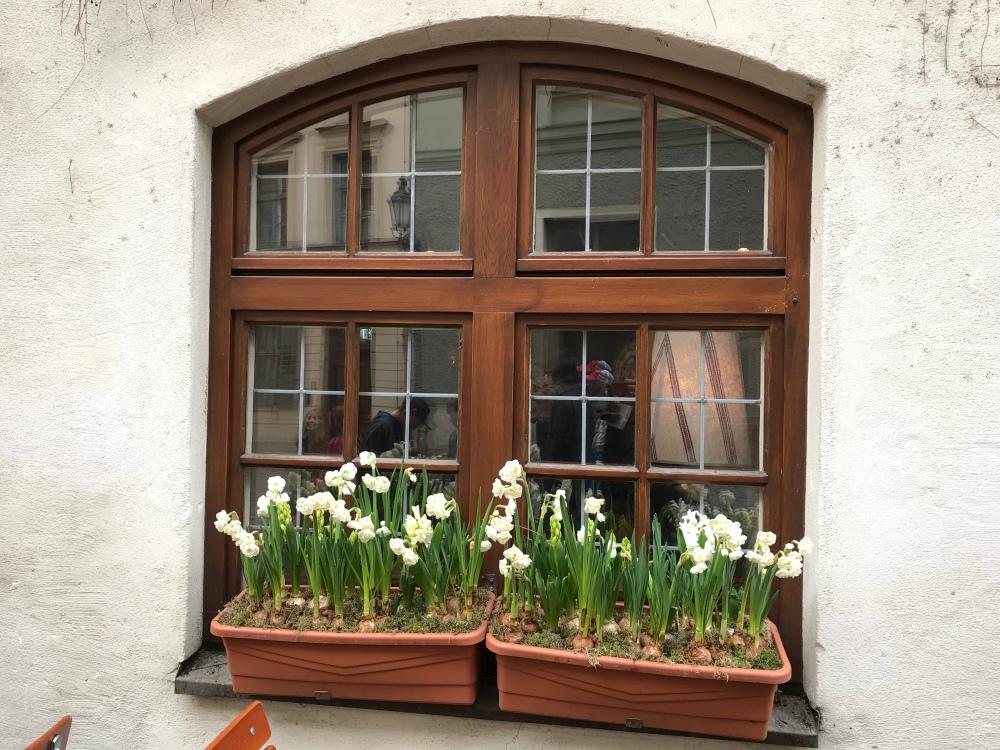 The universal pretty windows.